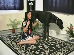 Japanese maid gratify of boss dog